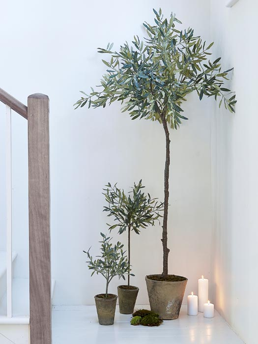 Faux_Olive_Tree