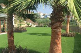 Art Garden 1