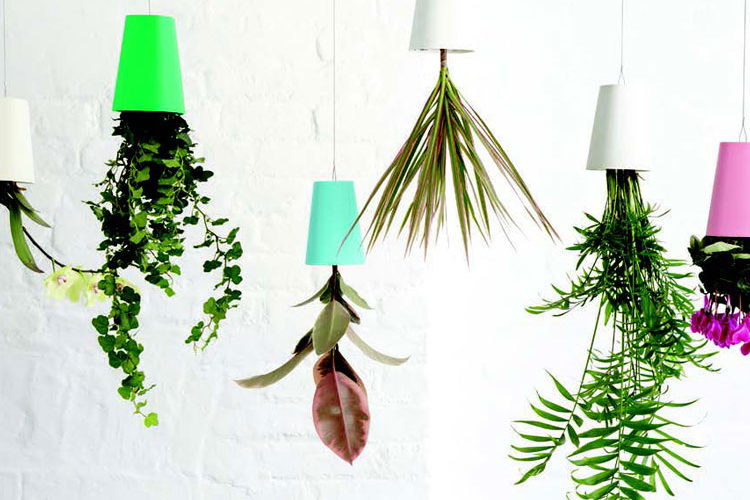 Hanging Pretty - Home & Lifestyle Magazine